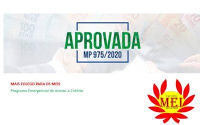 Novo programa Emergencial de Acesso a Crédito MP 975/2020
